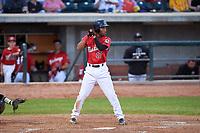 Billings Mustangs Reyny Reyes (17) at bat during a Pioneer League game against the Grand Junction Rockies at Dehler Park on August 15, 2019 in Billings, Montana. Billings defeated Grand Junction 11-2. (Zachary Lucy/Four Seam Images)