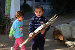 Palestinian children carry exotic taxidermied animals, which according to their owners died because they could not afford to feed the animals, at a park in Rafah in the southern Gaza Strip January 4, 2017. Photo by Abed Rahim Khatib
