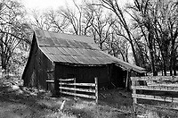 Barn on Triangle Road, 2019, Yosemite, CA  Film