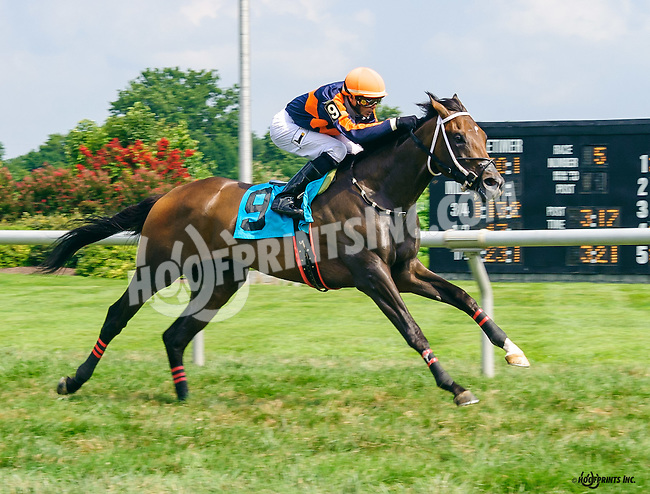 Monsoon K S A winning at Delaware Park on 8/6/16