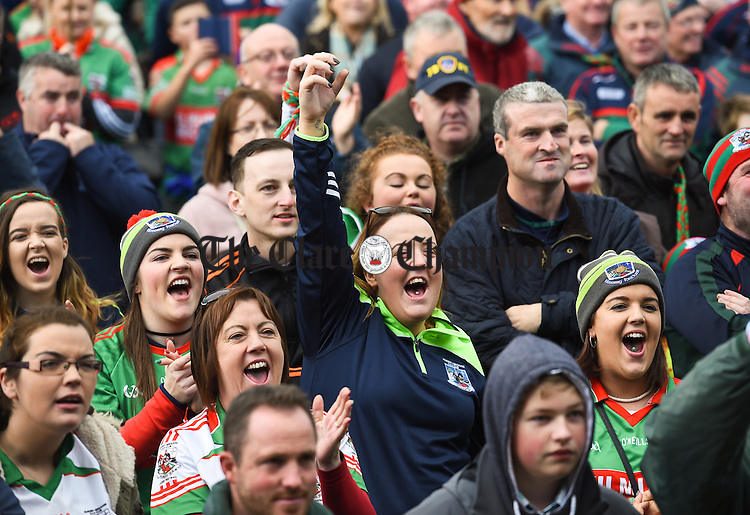 Kilmurry Ibrickane fans cheer on as the cup is presented following their senior football final replay win over Cratloe at Cusack park. Photograph by John Kelly.
