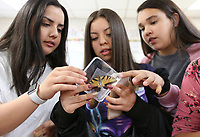 NWA Democrat-Gazette/DAVID GOTTSCHALK Lola Deleon (from left), Halee Valdez and Alyssa kierstead, all eighth grade students at Southwest Junior High, examine Friday, May 10, 2019, a Tiger Swallowtail Butterfly during Animal Club at the school in Springdale. Representatives with the Botanical Garden of the Ozarks' Education and Outreach visited the club to discuss caterpillars, host plants, eggs and the chrysalis for butterflies.