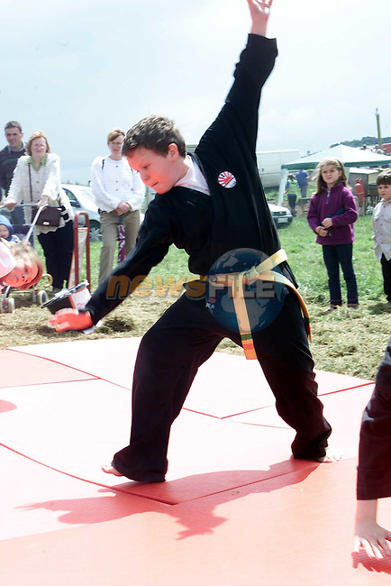 Universal Martial Arts and Health Centre, Ardee perfoming at the Collon Steam Rally on Sunday..Picture Paul Mohan Newsfile
