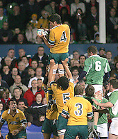 Australian second row Rob Simons claims this lineout ball during the Division A U19 World Championship clash at Ravenhill.