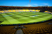 A general view of the One Day International cricket match between NZ Black Caps and India at Westpac Stadium in Wellington, New Zealand on Sunday, 3 February 2019. Photo: Dave Lintott / lintottphoto.co.nz
