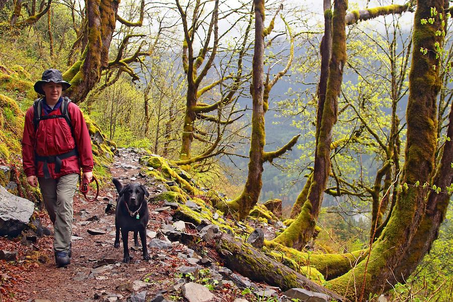Woman hiking with dog on Lake 22 Trail, Snohomish County, Cascade Mountains, Washington, USA