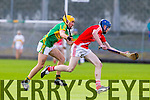 Lixnaw in action against  Bruff in the Munster Club Intermediate Hurling Championship Semi Final at Austin STacj Park on Sunday.