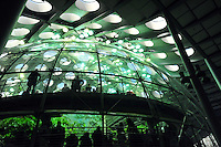 Dec. 30, 2009 - San Francisco, California, USA - Visitors walk inside a 4-story rainforest at the California California Academy of Sciences Natural History Museum in San Francisco Wednesday December 30, 2009. The giant structure contains many tropical animals including butterflies, snakes, birds and plants. (Photo by Alan Greth)