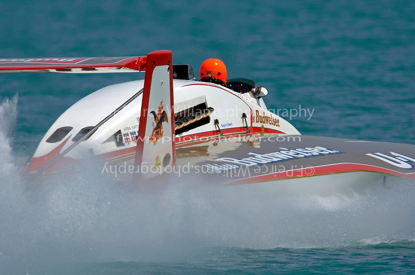 "David Williams, U-1 ""Miss Budweiser"" (1980 Rolls-Royce Griffon powered Ron Joes hull)"