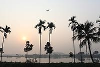 A bird flies over wetland in Kolkata, India. November, 2013