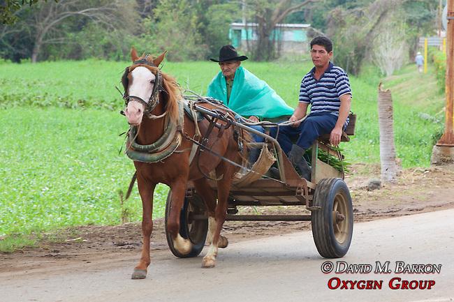 Men With Horse & Cart