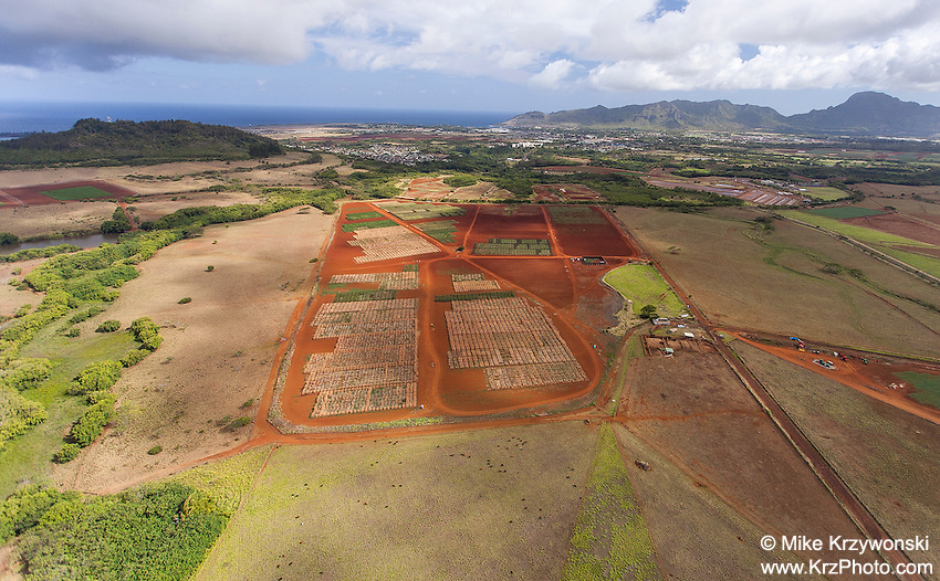 Aerial view of farmland near Hanamaulu, Kauai