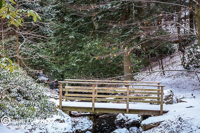 Footbridge over Bussey Brook  at the Arnold Arboretum in the Jamaica Plain neighborhood, Boston, Massachusetts, USA