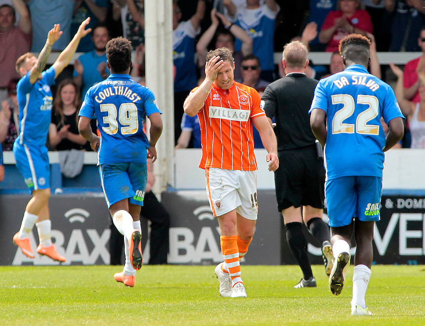 Blackpool&rsquo;s David Norris shows his frustration as Blackpool go 3-1 behind<br /> <br /> Photographer David Shipman/CameraSport<br /> <br /> Football - The Football League Sky Bet League One - Peterborough United v Blackpool  - Sunday 8th May 2016 - ABAX Stadium - London Road   <br /> <br /> &copy; CameraSport - 43 Linden Ave. Countesthorpe. Leicester. England. LE8 5PG - Tel: +44 (0) 116 277 4147 - admin@camerasport.com - www.camerasport.com