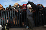 A man squeezes through a barricade to board a bus at the Tunisia-Libya border near Ben Guerdane, Tunisia, Friday, Feb. 26, 2011. Thousands of foreign workers continued their exodus across the border into Tunisia, fleeing violence sparked by an uprising against Col Muammar Qaddafi. The refugees, primarily Egyptians, had to wait at the border or at an improvised camp nearby until a bus could take them to the airport in Tunis.