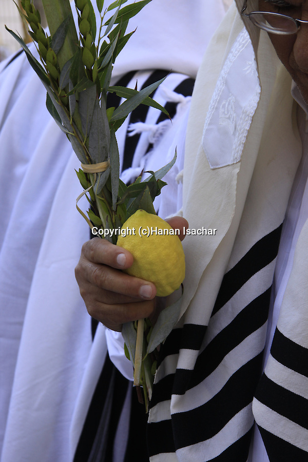 Succot holiday, the Priestly Blessing ceremony at the Western Wall, a prayer with the Four Species