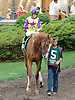 Bold Affair before The Sweet and Sassy Stakes at Delaware Park on 6/23/12