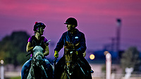LOUISVILLE, KENTUCKY - APRIL 30: Horses walk on the track as the sun rises in the distance during Kentucky Derby and Oaks preparations at Churchill Downs on April 30, 2017 in Louisville, Kentucky. (Photo by Scott Serio/Eclipse Sportswire/Getty Images)