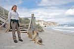 Ile Kangourou au sud d'Adelaide.Lion de mer australien, Australian Sea Lion (Neophoca cinerea) a Seal Bay au sud de l'ile. Lion de mer endemique a l'Australie. On compterait environ 12 000 individus. La colonie de Kangourou Island avec 600 individus est la plus importante
