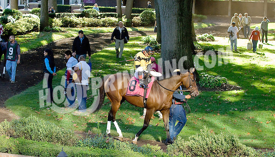 Eve Giselle before The Endine Stakes at Delaware Park on 10/13/12