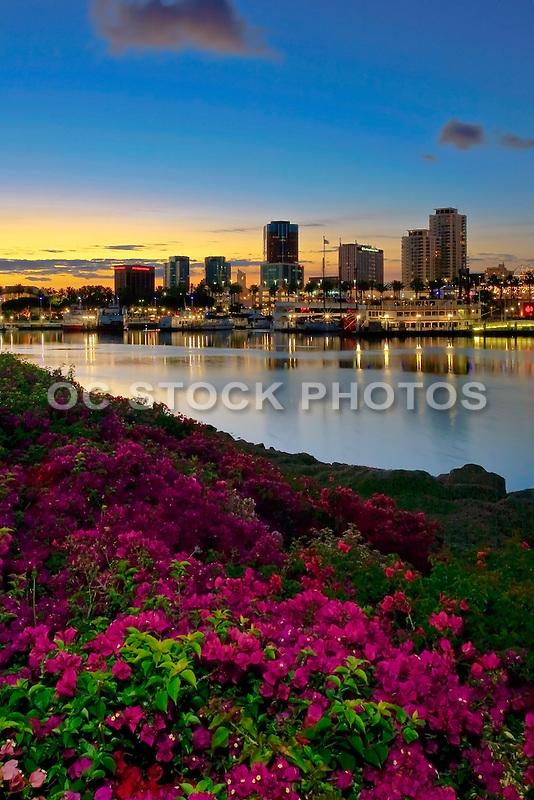 Long Beach Rainbow Harbor View At Dusk