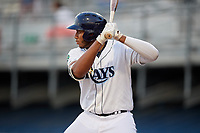 Princeton Rays first baseman Vincent Byrd (24) at bat during the second game of a doubleheader against the Johnson City Cardinals on August 17, 2018 at Hunnicutt Field in Princeton, Virginia.  Princeton defeated Johnson City 12-1.  (Mike Janes/Four Seam Images)
