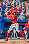 6 March 2019: Philadelphia Phillies infielder Malquin Canelo at bat during a Spring Training game against the Toronto Blue Jays at Dunedin Stadium in Dunedin, Florida. The Blue Jays defeated the Phillies 9-7 in Grapefruit League play. Mandatory Credit: Ed Wolfstein Photo *** RAW (NEF) Image File Available ***