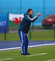 16th November 2019; Leckwith Stadium, Cardiff, Glamorgan, Wales; European Championship Under 19 2020 Qualifiers, Russia under 19s versus Wales under 19s; Aleksandr Kerzhakov, Coach of Russia Under 19 gives instructions during the first half - Editorial Use