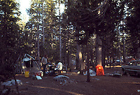 Campsite in Morning, Tuolumne Meadows, Yosemite National Park. View shot on Kodachrome II, Nikon Ftn camera,  30 July 1973