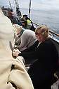 THE BESSIE ELLEN TRAVEL FEATURE.<br /> The crew lower the sails off the island of Lunga in the Inner Hebrides, Scotland.<br /> Karen McSporan, 44, rolling up the main sail.<br /> Photo:Clare Kendall<br /> 24/05/2016