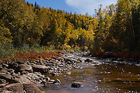 Fall Colors along the Gooseberry River in Gooseberry State Park.