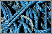 Blue creel rope, South Uist ... Picture by Donald MacLeod