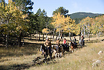 Family group outdoors on a crisp and cool fall morning riding horses in Rocky Mountain National Park, near Estes Park, Colorado, USA (MR #88)
