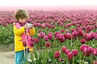 Girl photographing field of tulips, Skagit Valley, Washington, USA