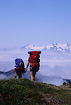 Hikers hiking in the Olympic National Park