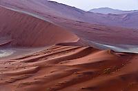 From Dune 45, Sossusvlei, at sunrise, Nambia