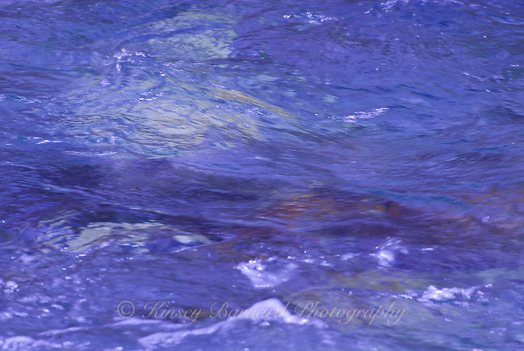 &quot;LIQUID LAVENDER&quot;<br />