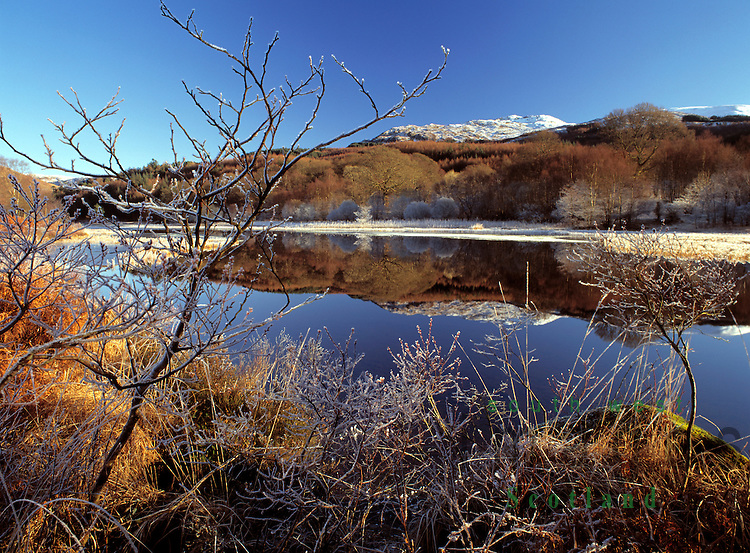 Cold winter landscape a clear frosty day on the edge of Loch Trool looking up toa snow topped Mulldonoch in the Galloway Forest Park Scotland UK