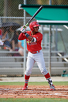 GCL Cardinals right fielder Brian Sanchez (16) at bat during a game against the GCL Mets on July 23, 2017 at Roger Dean Stadium Complex in Jupiter, Florida.  GCL Cardinals defeated the GCL Mets 5-3.  (Mike Janes/Four Seam Images)