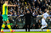 Norwich City manager Daniel Farke appeals for calm during the first half<br /> <br /> Photographer Alex Dodd/CameraSport<br /> <br /> The EFL Sky Bet Championship - Leeds United v Norwich City - Saturday 2nd February 2019 - Elland Road - Leeds<br /> <br /> World Copyright © 2019 CameraSport. All rights reserved. 43 Linden Ave. Countesthorpe. Leicester. England. LE8 5PG - Tel: +44 (0) 116 277 4147 - admin@camerasport.com - www.camerasport.com