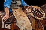 Closeup of cowboy roping and dallying at a  cattle roundup at Huasna, California