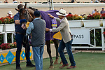 "DEL MAR, CA  AUGUST 17:  #6 Higher Power, ridden by Flavien Prat, receives his Breeders' Cup cooler after winning the TVG Pacific Classic (Grade 1) ""Win and You're In Breeders' Cup Classic Division"" on August 17, 2019 at Del Mar Thoroughbred Club in Del Mar, CA. (Photo by Casey Phillips/Eclipse Sportswire/CSM)"