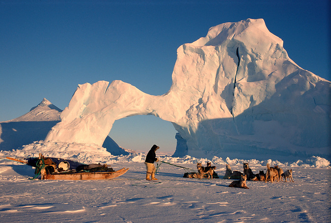 Inuit hunter untangles the traces of his dog team by an iceberg near Cape York. N.W. Greenland.
