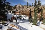 A horseback ride above Upper Blue Lake in Alpine County, Ca. near South Lake Tahoe on Wednesday, Nov. 3, 2010. .Photo by Cathleen Allison