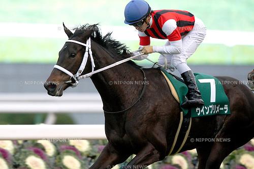 Win Primera (Yuga Kawada),<br /> JANUARY 5, 2016 - Horse Racing :<br /> Win Primera ridden by Yuga Kawada wins the Sports Nippon Sho Kyoto Kimpai at Kyoto Racecourse in Kyoto, Japan. (Photo by Eiichi Yamane/AFLO)
