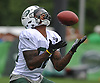 Daniel Williams #82 makes a catch during York Jets Training Camp at the Atlantic Health Jets Training Center in Florham Park, NJ on Monday, Aug. 14, 2017.