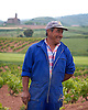 A worker in the vineyards along the pilgrimage route to Santiago de Compostela, in the La Rioja region of Spain. Photo by Kevin J. Miyazaki/Redux