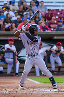 Kane County Cougars second baseman Fernery Ozuna (9) at bat during game one of a Midwest League doubleheader against the Wisconsin Timber Rattlers on June 23, 2017 at Fox Cities Stadium in Appleton, Wisconsin.  Kane County defeated Wisconsin 4-3. (Brad Krause/Four Seam Images)