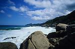 Brazil Atlantic Coast Ilha Grande Forest