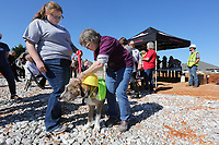 NWA Democrat-Gazette/DAVID GOTTSCHALK Meredith Salts (left), a kennel technician, helps Della Jordan, assistant director of Animal Services for the City of Springdale, place a plastic construction hat on Rufus Tuesday, October 8, 2019, before they participate in the ground breaking ceremony for the new Animal Shelter and Adoption Center of Springdale. The new facility, located at 1549 E. Don Tyson Parkway, was made possible by a 2018 $200 million bond program voted on by residents that also includes money for streets, fire stations and a new city administration building.